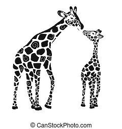 giraffe, weißes, vektor, hintergrund., baby, erwachsener, zwei, reizend, giraffen, freigestellt, giraffe.