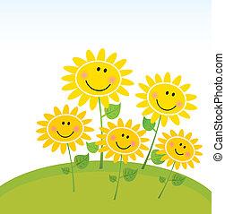 glücklich, sonnenblumen, kleingarten, fruehjahr