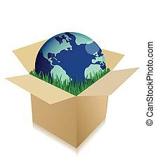 Globe in einem Versandkasten mit Gras