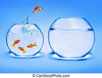 Goldfische springen aus dem Wasser