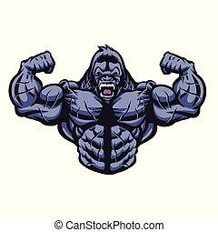 gorilla, bodybuilder, abbildung, führt