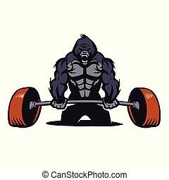 gorilla, bodybuilder, hantel