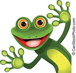grün, fröhlich, frosch