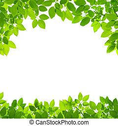 Grün verlässt die Grenze zu weißem Hintergrund
