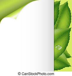 Grüne Blätter und Papier