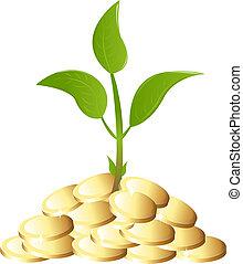 Grüne junge Pflanze mit Geld