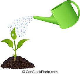 Grüne Jungpflanze mit Wasserkanister