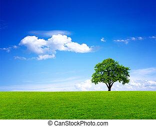 Grüne Naturlandschaft