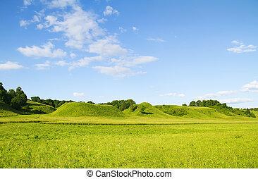 Grüner, blau wolkiger Himmel