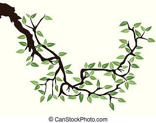 Grüner Frühlingsbaum.