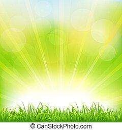 Grüner Hintergrund mit grünem Gras und Sonnenbrand