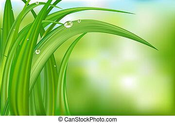 Grüner Hintergrund mit Gras