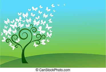 Grüner Schmetterlingsbaum