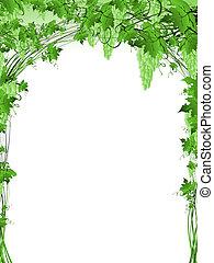 Grüner Traubenrahmen