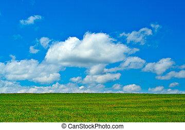 Grünes Feld, blauer Himmel und weiße Wolken