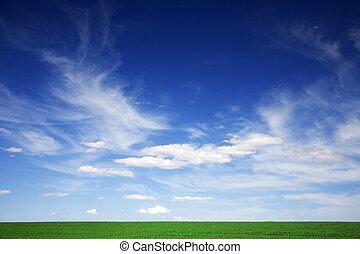 Grünes Feld, blauer Himmel, weiße Wolken im Frühling