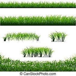 Grünes Gras grenzt großen weißen Hintergrund.