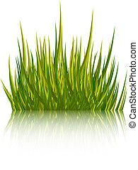 Grünes Gras, isoliert auf weißem Hintergrund. Vector Illustration.