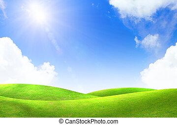 Grünes Gras mit blauem Himmel