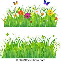 Grünes Gras mit Blumen und Insekten