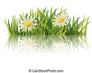 Grünes Gras mit Marienkäfer