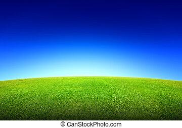 Grünes Gras und Himmel.