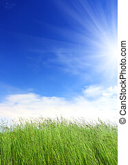 Grünes Gras unter blauem Himmel.