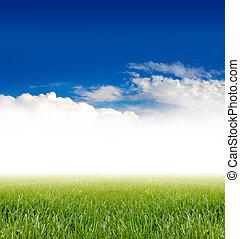 Grünes Gras unter blauem Himmel