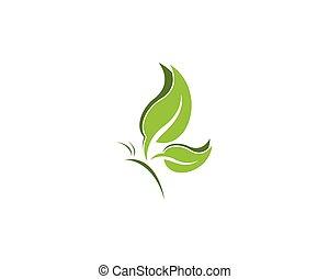 Grünes Schmetterlingsblatt Logo Design Vorlage.