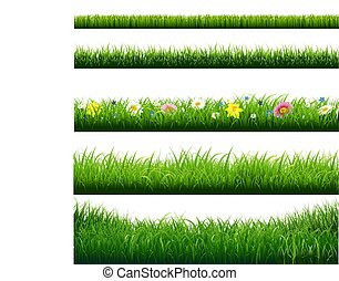 Gras grenzt fest.