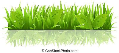 Gras und Blätter.