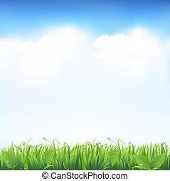 Gras und Himmel