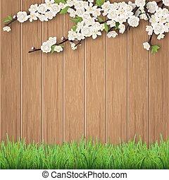 Grass and spring Cherry Zweig auf B