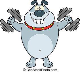 Grauer Bulldog mit Dumpfbacken.