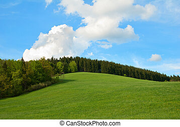 Green Field and Forest Hill with blue sky.