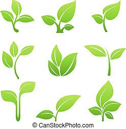 Green sprout Symbol vektor gesetzt.