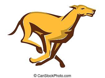 Greyhound-Hund-Hund-Ranching.