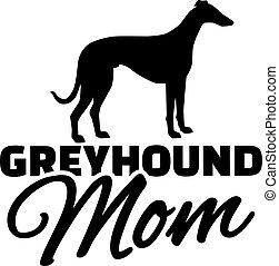 Greyhound-Mutter.