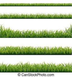 Große grüne Grasgrenze.