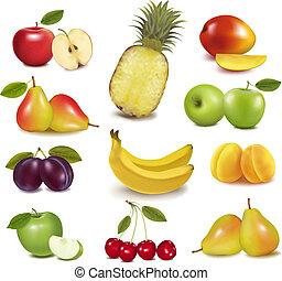 Große Gruppe verschiedener Früchte. Vector.