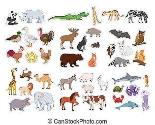 Große Tiere Set, Illustration mit Tieren Sammlung isoliert auf weißem Hintergrund