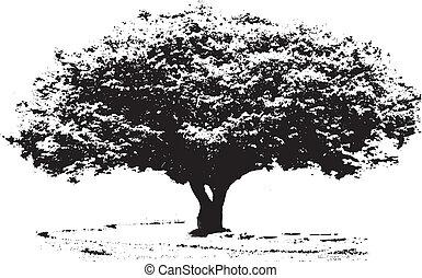 Großer Baum.