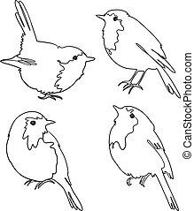 grobdarstellung, vier, vögel, rotkehlchen, vektor, freehand, satz