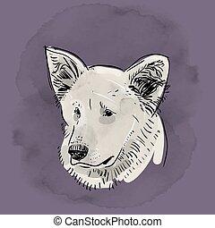 grunge, kontur, shepherd., kopf, schwarz, mündung, dog., vektor, skizze, drawing., hintergrund., lila