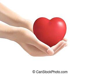 Hände mit Herz. Vector.
