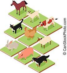 Häusliche isometrische Tiere.
