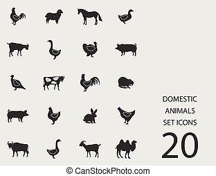 Häusliche Tiere mit flachen Ikonen. Vector Illustration