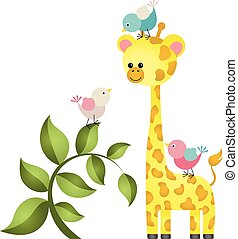Hübsche Giraffe mit drei Vögeln