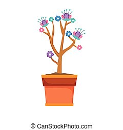 Hübsche Hauspflanzen-Pflanze.