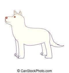 Hübsche Husky-Hund-Ikone